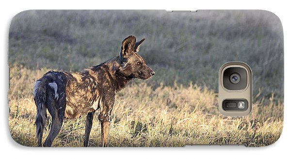 Galaxy Case featuring the photograph Pregnant African Wild Dog by Liz Leyden