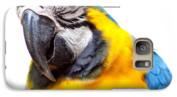 Galaxy Case featuring the photograph Pretty Bird by Roselynne Broussard