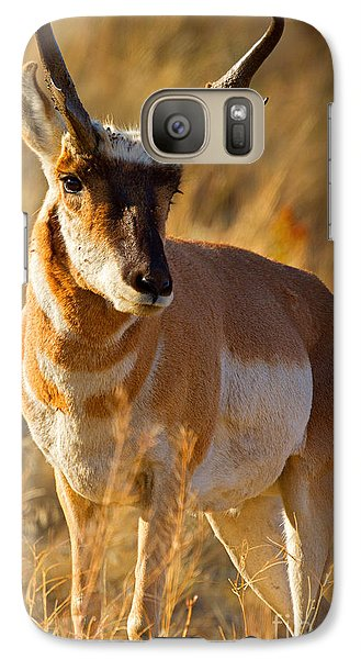 Galaxy Case featuring the photograph Pronghorn by Aaron Whittemore
