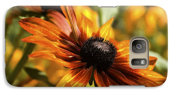 Galaxy Case featuring the photograph Proud Orange by Catherine Fenner