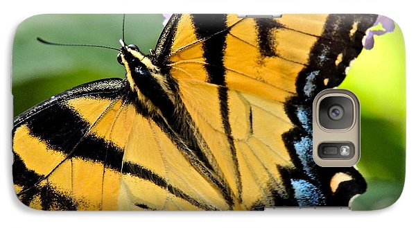 Galaxy Case featuring the photograph Proud Swallowtail by Eve Spring