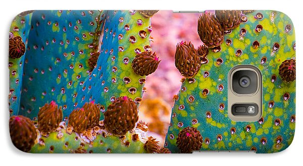 Galaxy Case featuring the photograph Psychedelic Cactus by Glenn DiPaola