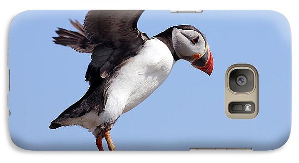 Puffin In Flight Galaxy S7 Case