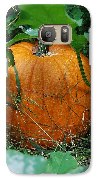 Galaxy Case featuring the photograph Pumpkin Patch by Ramona Whiteaker