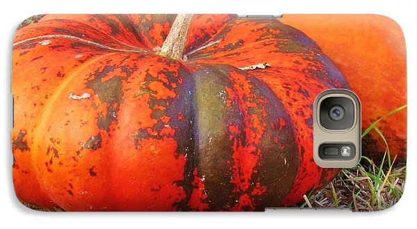 Galaxy Case featuring the photograph Pumpkins by Cynthia Guinn