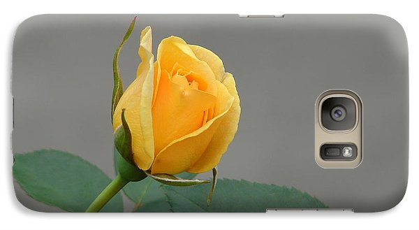 Galaxy Case featuring the photograph Pure Gold by Lew Davis