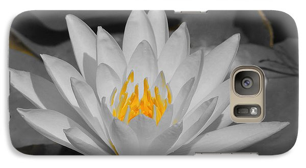 Galaxy Case featuring the photograph Pure by Teresa Schomig