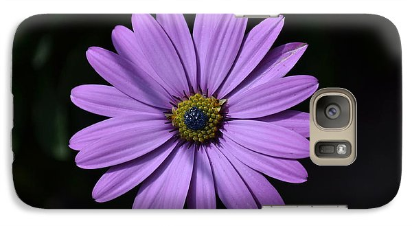 Galaxy Case featuring the photograph Purple African Daisy by Scott Lyons