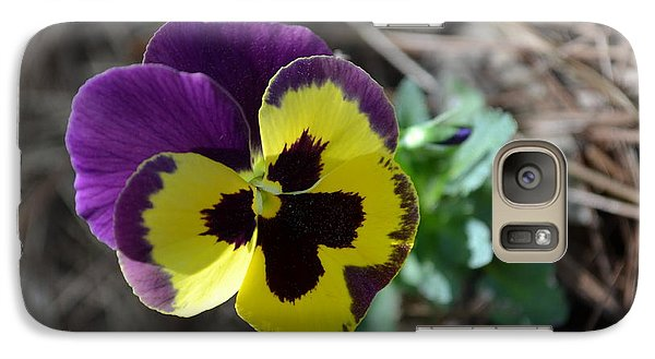 Galaxy Case featuring the photograph Purple And Yellow Pansy by Tara Potts