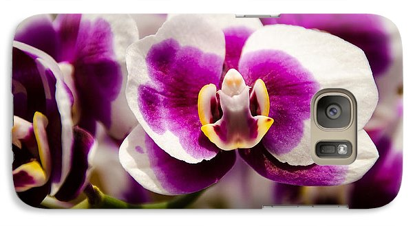 Galaxy Case featuring the photograph Purple Beauty by Penny Lisowski