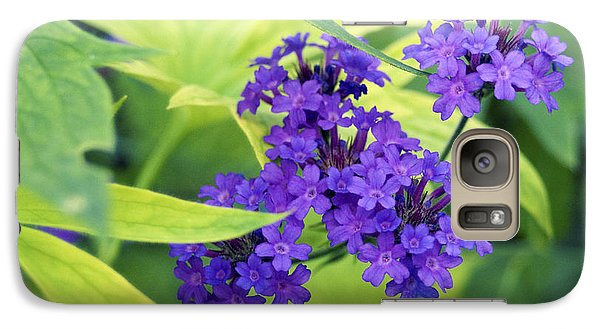 Galaxy Case featuring the photograph Purple Bunch  by Haleh Mahbod