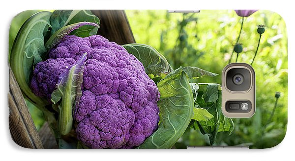Purple Cauliflower Galaxy Case by Aberration Films Ltd