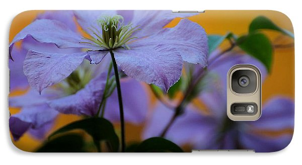 Galaxy Case featuring the photograph Purple Clematis Evening by Beth Akerman
