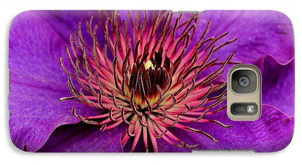 Galaxy Case featuring the photograph Purple Clematis by Suzanne Stout