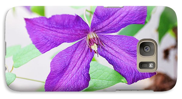 Galaxy Case featuring the photograph Purple Climbing Vine by Linda Brown