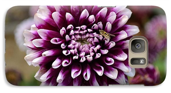 Galaxy Case featuring the photograph Purple Dahlia White Tips by Scott Lyons