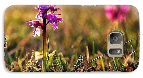 Galaxy Case featuring the photograph Purple Flower In Back Light by Kennerth and Birgitta Kullman