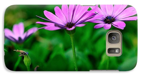 Galaxy Case featuring the photograph Purple Flowers by Joe  Ng
