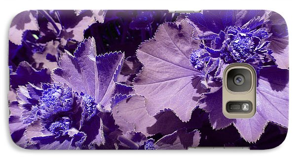 Galaxy Case featuring the photograph Purple Flowers by Laurie Tsemak