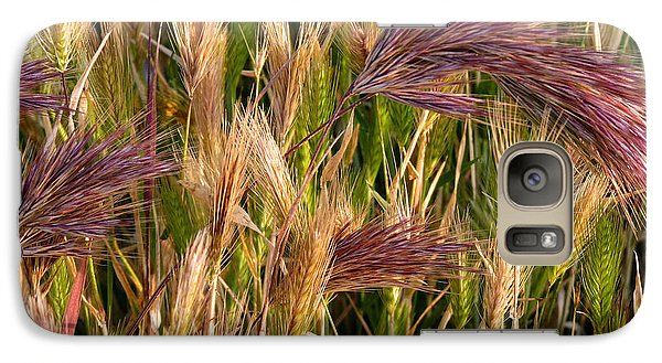 Galaxy Case featuring the photograph Purple Grasses by Meghan at FireBonnet Art