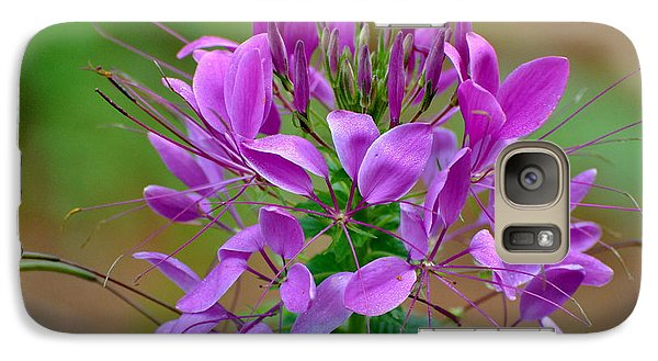 Galaxy Case featuring the photograph Purple Lilly by Jodi Terracina