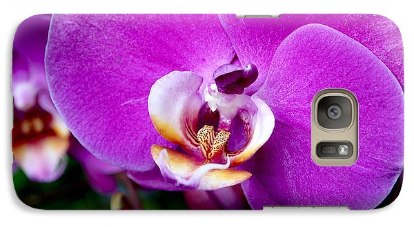 Purple Orchid Galaxy S7 Case by Rona Black