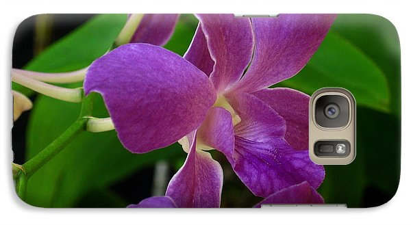 Galaxy Case featuring the photograph Purple Over Green by Greg Allore