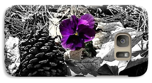 Galaxy Case featuring the photograph Purple Pansy by Tara Potts