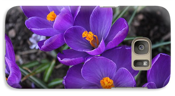 Galaxy Case featuring the photograph Purple Passion by Judy Palkimas