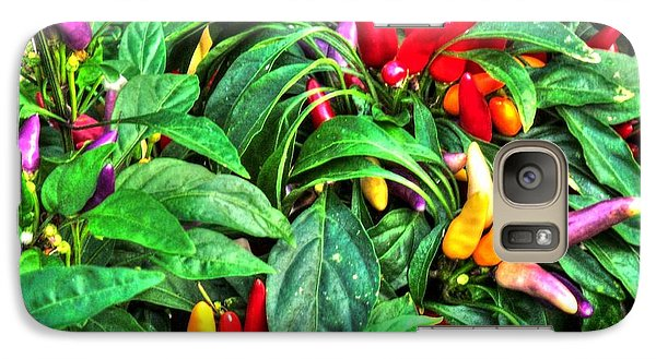 Galaxy Case featuring the photograph Purple Peppers by Lanita Williams