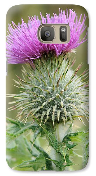 Galaxy Case featuring the photograph Purple Thistle by Jeremy Voisey