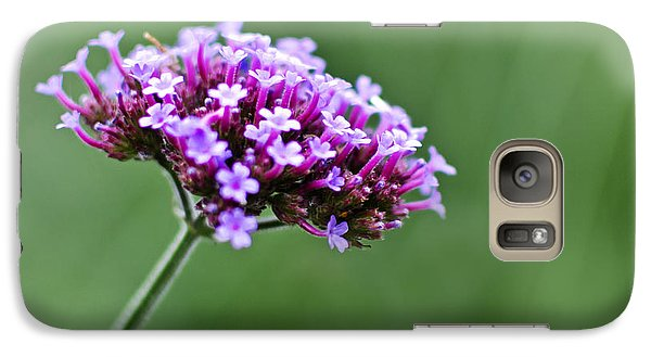 Galaxy Case featuring the photograph Purple Top Flower by Maria Janicki