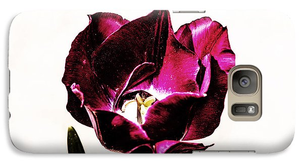 Galaxy Case featuring the photograph Purple Tulip by Angela DeFrias
