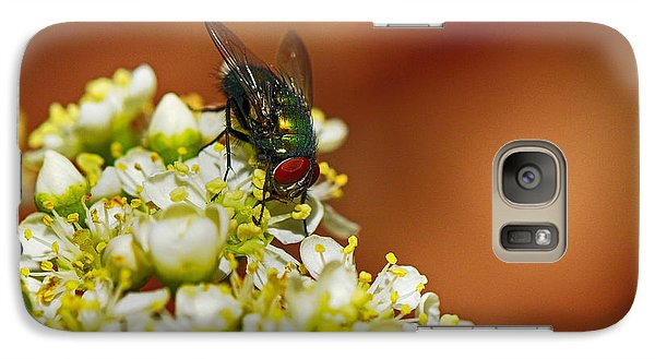 Galaxy Case featuring the photograph Pyracantha And Fly by Karen Slagle