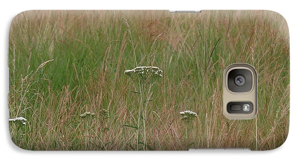 Galaxy Case featuring the photograph Queen Anne's Lace by Aurora Levins Morales