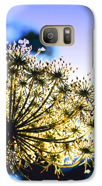 Galaxy Case featuring the photograph Queen Anne's Lace II by Diane Merkle