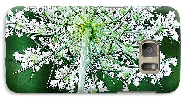 Galaxy Case featuring the photograph Queen Ann's Lace by Al Fritz