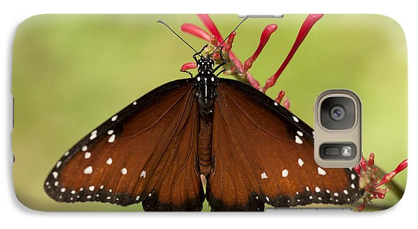 Galaxy Case featuring the photograph Queen Butterfly by Meg Rousher