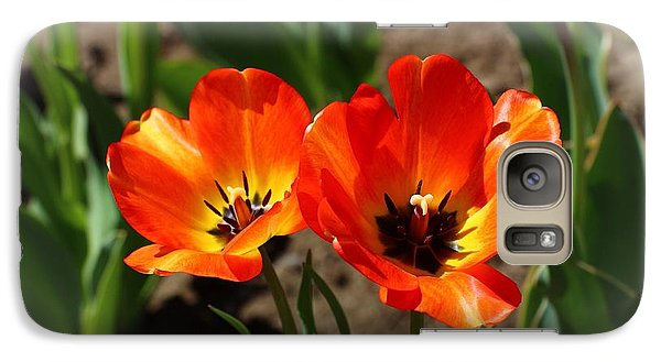 Galaxy Case featuring the photograph Quite The Pair by Lynn Hopwood