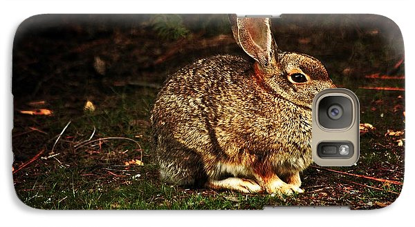 Galaxy Case featuring the photograph Rabbit  by Marjorie Imbeau