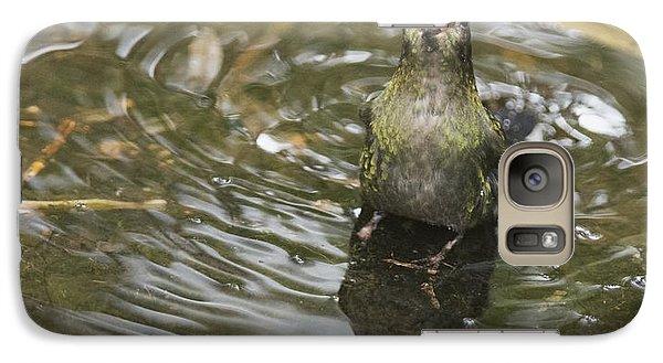 Galaxy Case featuring the photograph Rainbow-bearded Thornbill Hummingbird by Dan Suzio