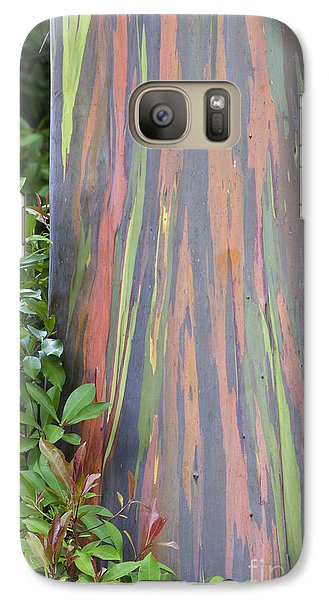 Galaxy Case featuring the photograph Rainbow Eucalyptus by Bryan Keil
