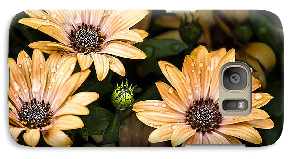 Galaxy Case featuring the digital art Raindrops On Gerbera Daisies by Photographic Art by Russel Ray Photos
