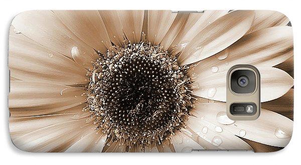 Daisy Galaxy S7 Case - Raindrops On Gerber Daisy Sepia by Jennie Marie Schell