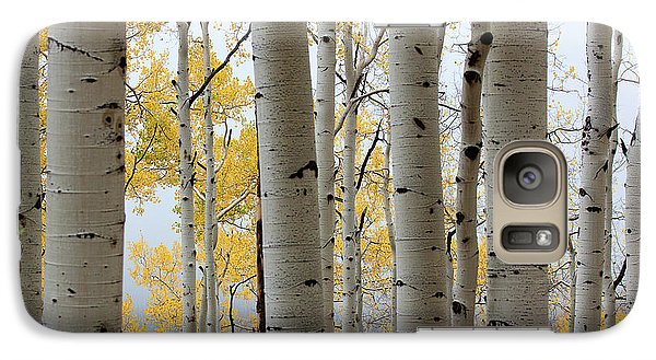 Galaxy Case featuring the photograph Rainy Day Aspen  by Jim Garrison