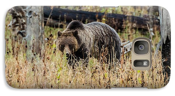 Galaxy Case featuring the photograph Rainy Day Grizzly Sow by Yeates Photography