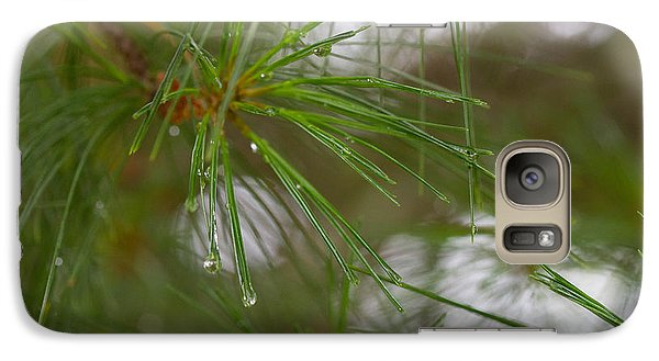 Galaxy Case featuring the photograph Rainy Day Pines by Haren Images- Kriss Haren