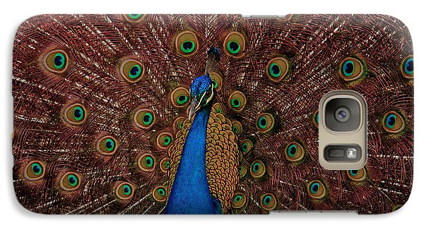 Galaxy Case featuring the photograph Rare Pink Tail Peacock by Eti Reid
