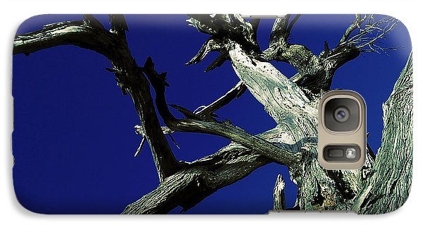 Galaxy Case featuring the photograph Reach For The Sky by Janice Westerberg