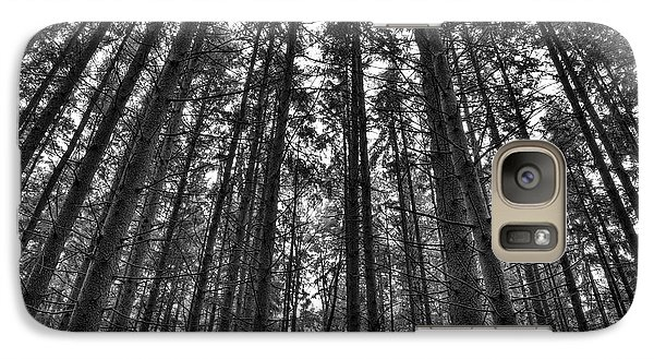 Galaxy Case featuring the photograph Reaching Pines by Don Nieman